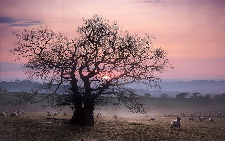 Sunset At Countryside, West Great Britain Photography By: Kris Dutson