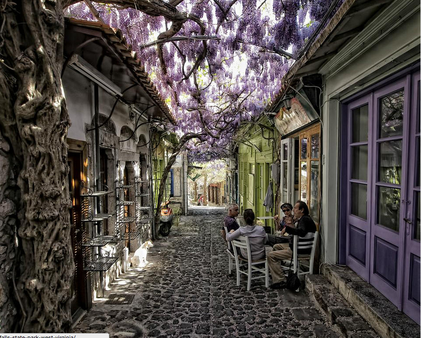 Magical Flower Street In Greece Photography By: Costas Stamatellis