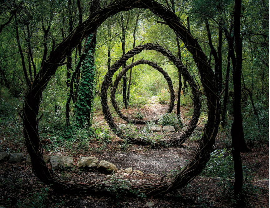 Nature Inspired Sculptures In Deep Forest Photography By: Spencer Byles