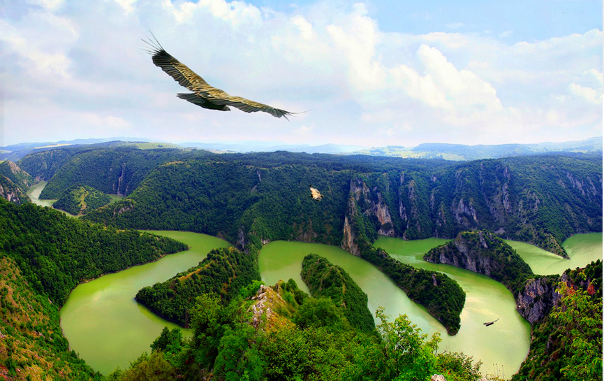 Eagle Over River Uvac, Serbia Photography By: Unknown